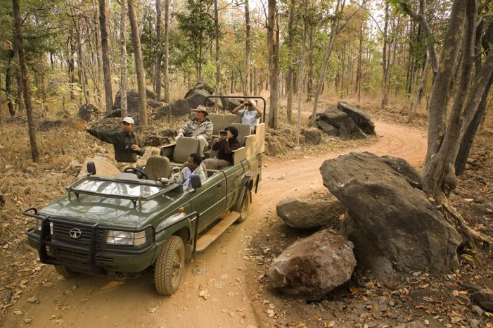 Naturaleza pura (con safari incluido en Nepal)