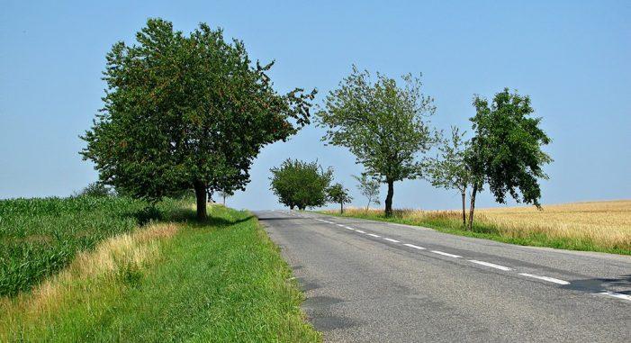 Cómo conducir por carreteras secundarias en Otoño