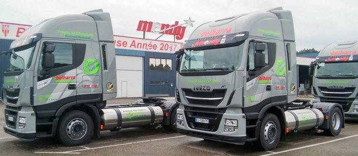 Iveco entrega a Transports P. Mendy los tres primeros Stralis NP con depósito de GNL
