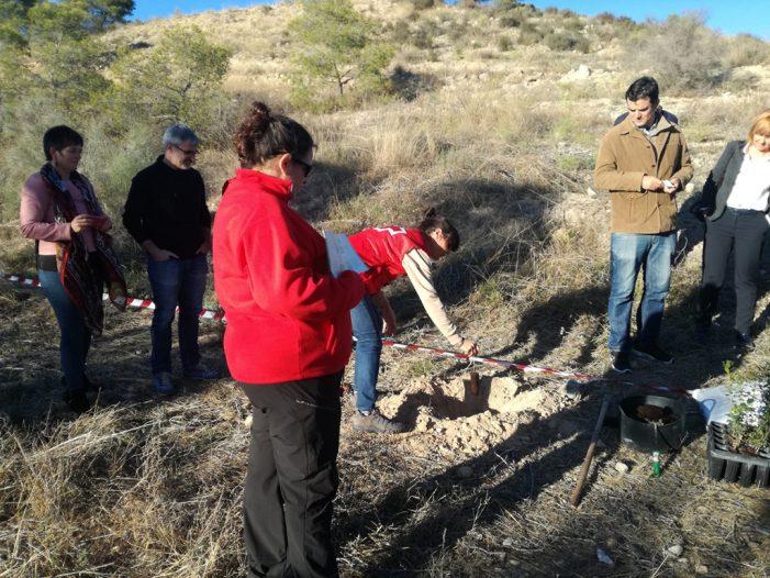 Empleados de Goldcar participan en la reforestación de San Juan