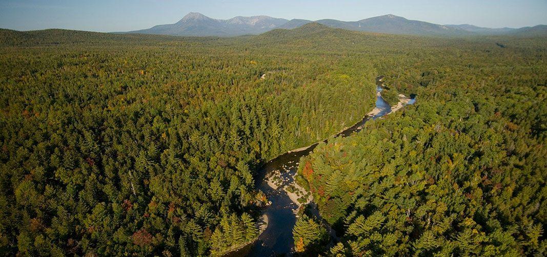 La Fundación Enterprise Rent-A-Car apoya la conservación de ríos