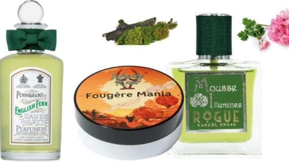 Fougère: el limpio aroma herbal que reina en la perfumería